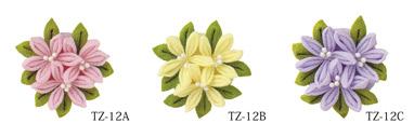 TZ-12_CL.jpg