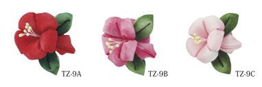 TZ-9_CL.jpg