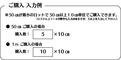 gokounyuurei.jpg